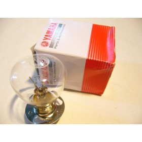 Yamaha TY 434 or 493 front light bulb
