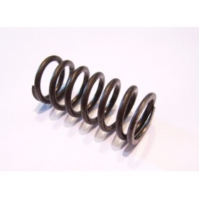 FANTIC clutch spring (FM Fantic engines)