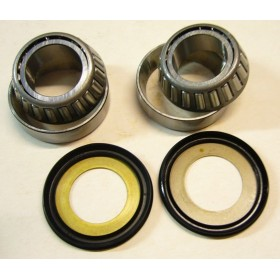 FANTIC Taper roller headbrace bearings kit